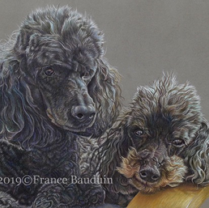 "Doris & Toots - 51 hours Dark Grey Pastelmat Board 13"" x 18"""