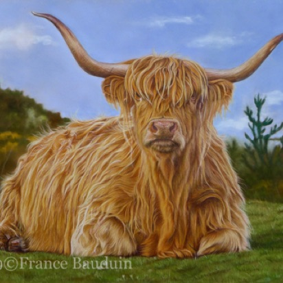 "Highland Cow - 38 hours Terracotta Pastelmat Board 13.7"" x 19.5"""