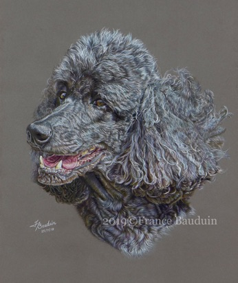 "Lily - 33 hours Dark Grey Pastelmat Board 17"" x 13"""