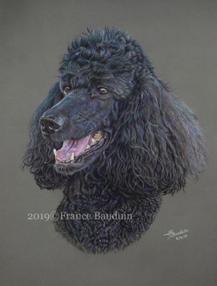 "Megan - 44 hours Dark Grey Pastelmat board 18"" x 13.5"""