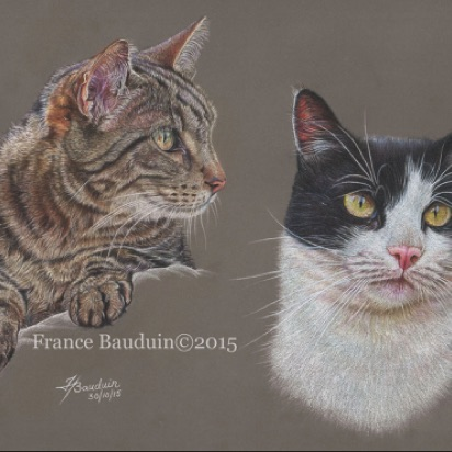 "Molly & Ozzy - 33 hours Dark Grey Pastelmat Board 10"" x 14.5"""